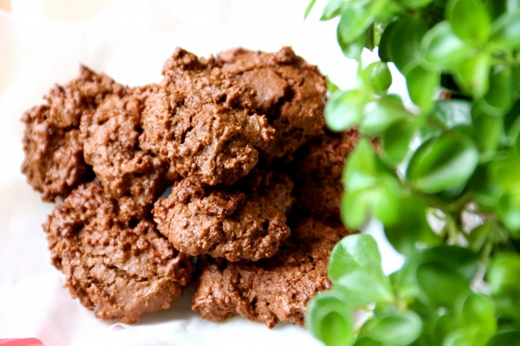 The best sugar-free chocolate cookies recipe ever! The best healthy toddler snack ever! Presented by Healthy Little Plate.